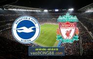 Soi kèo, nhận định Brighton Albion vs Liverpool - 19h30 - 28/11/2020